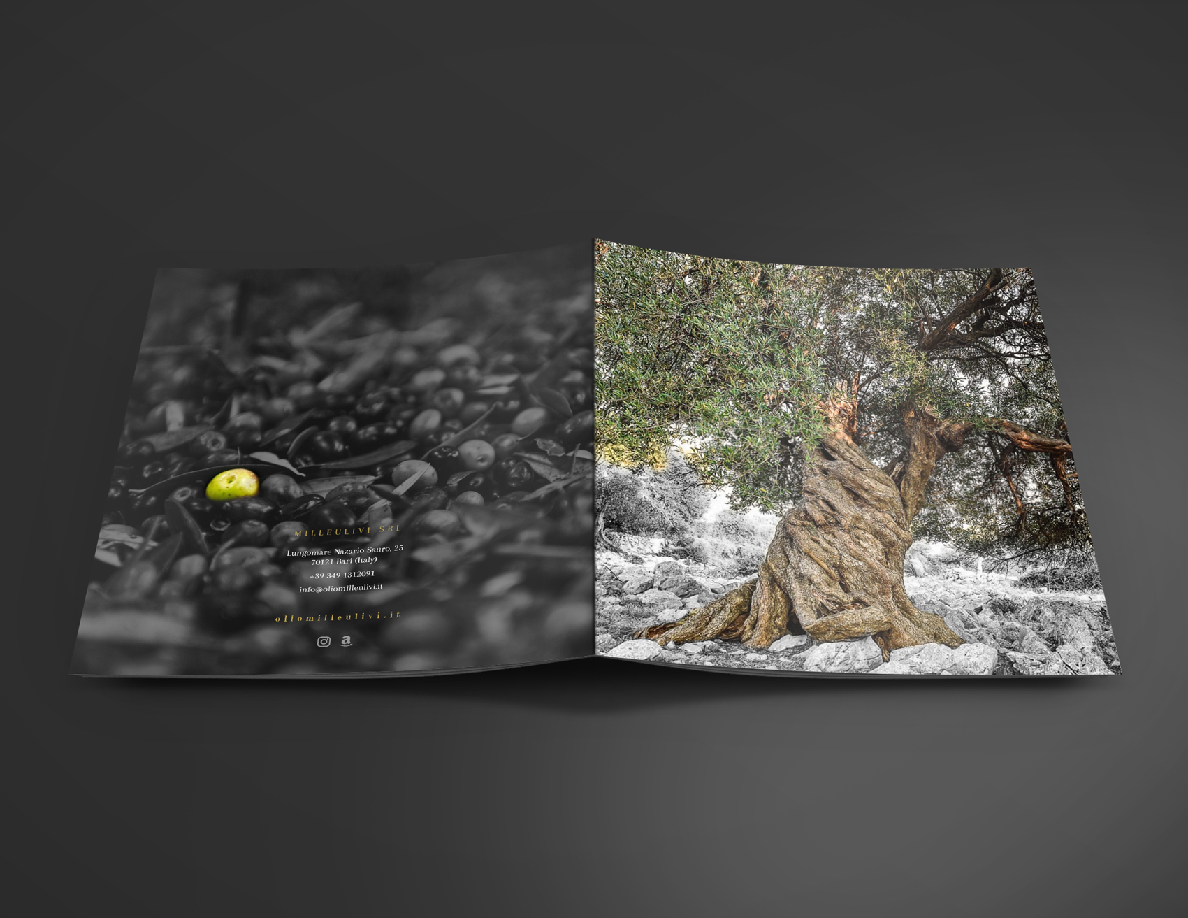 Mockup_Brochure_21x21_7